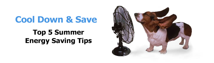 Cool Down & Save Top 5 Summer Energy Saving Tips